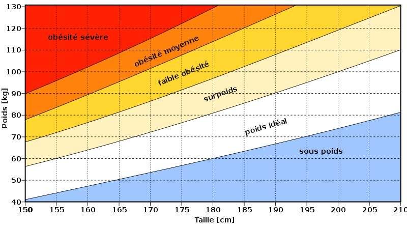 L'IMC ne prend en compte que la taille et le poids. Il est donc forcément réducteur. © superwikifan, CC by-sa-30