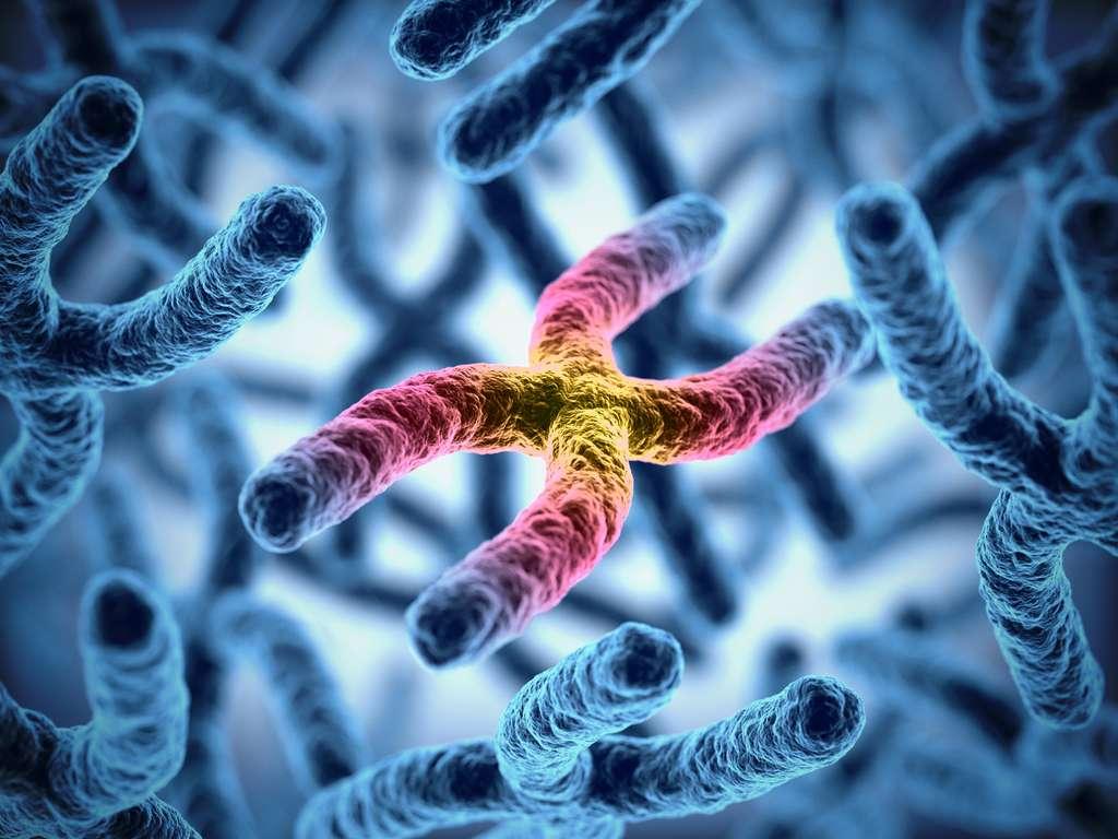 Une mutation stochastique survient de façon aléatoire. © koya979, Fotolia