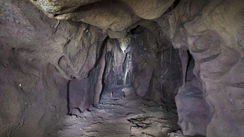 La chambre qui vient d'être découverte a été scellée pendant au moins 40.000 ans. © Gibraltar National Museum