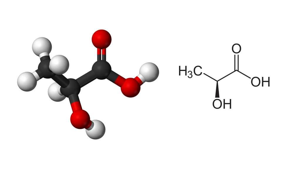 Le lactate est la forme ionique de l'acide lactique. © Benjah-bmm27, Wikimedia commons, DP