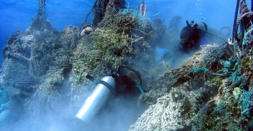 Quels sont les effets du plastique sur les animaux et l'environnement ? Ici, filets pris dans les récifs coralliens. © Dwayne Meadows, NOAA/NMFS/OPR, CC by-nc 2.0