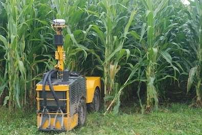 L'une des particularités du maïs est sa croissance très rapide qui complique sa fertilisation avec des machines agricoles traditionnelles. En effet, passée une certaine hauteur, un tracteur peut endommager les plants, ce qui pousse les agriculteurs à administrer des doses d'engrais plus importantes en début de saison. Les dimensions du Rowbot ont été pensées pour qu'il puisse circuler dans les rangées de plants de maïs sans les endommager. Il peut ainsi apporter de l'engrais de façon régulière tout au long de la croissance de la plante. © Rowbot