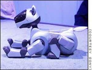 Au Japon, le robot-chien Aibo fait presque partie de la famille. © Aibo, Sony