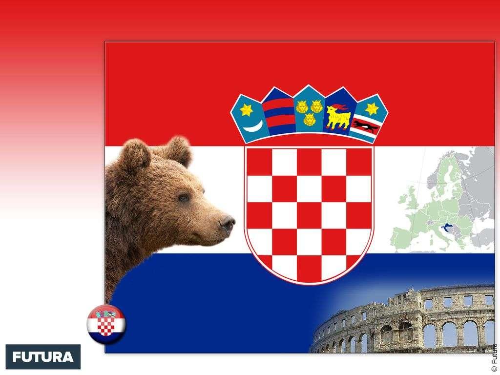 Drapeau : Croatie