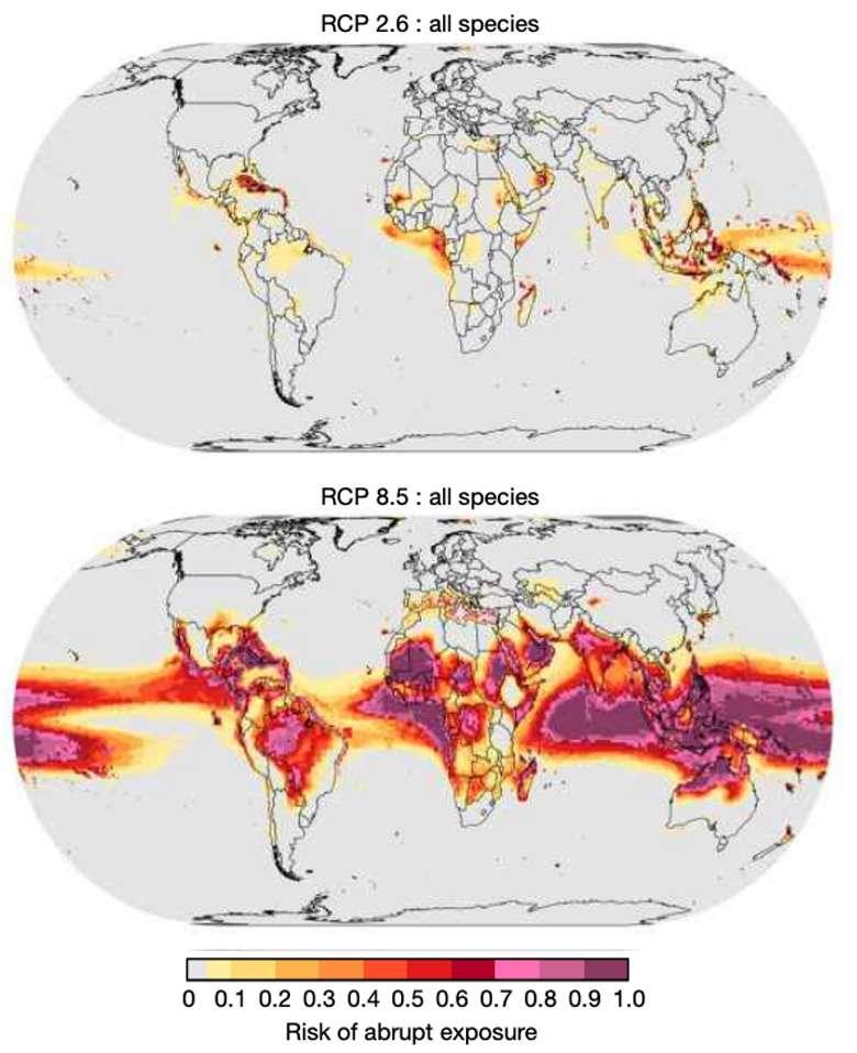 Des cartes montrant les risques de survenue d'«événements d'exposition brutale» dans différentes régions du monde d'ici 2100. En haut, dans un scénario de réchauffement contenu à moins 2 °C et en bas, dans un scénario de réchauffement à +4 °C. © Trisos et al.