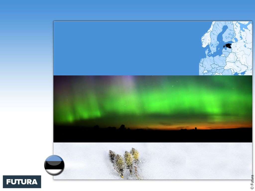 Drapeau : Estonie