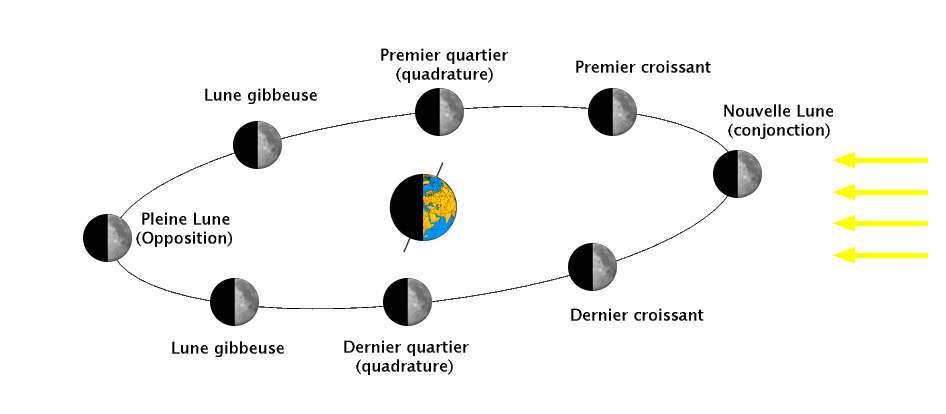 Schéma des différentes phases de la Lune. © Wikipedia, CC by-sa 3.0