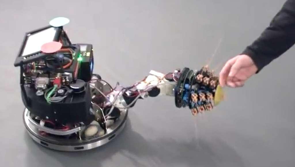 Le Shrewbot, un robot à roues, perçoit son environnement lorsqu'il se déplace grâce à ses longues moustaches, dont l'utilisation a été inspirée par une petite musaraigne. © Martin Pearson, Bristol Robotics Lab/YouTube
