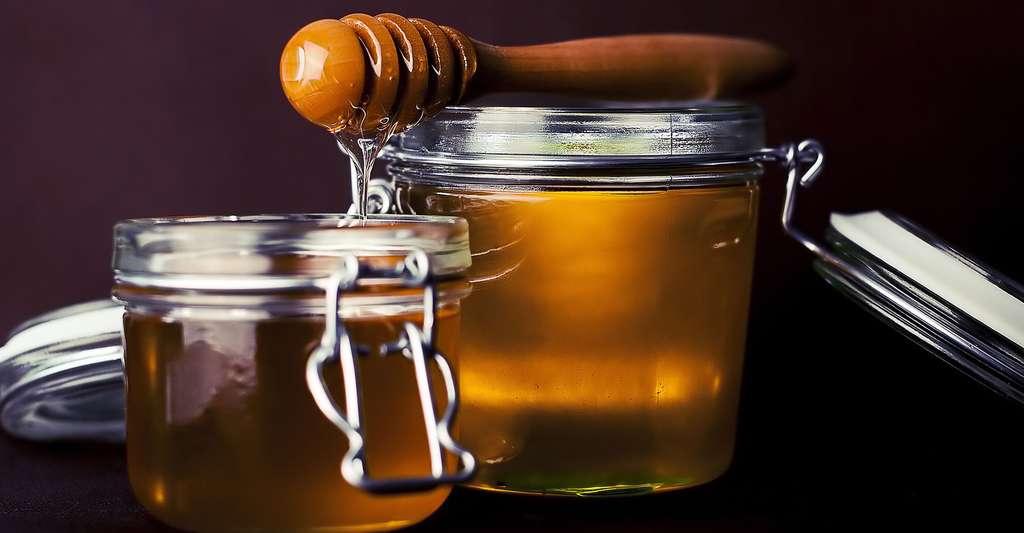 Le miel, un des fabuleux produits de la ruche. © Fancycrave1, CCO