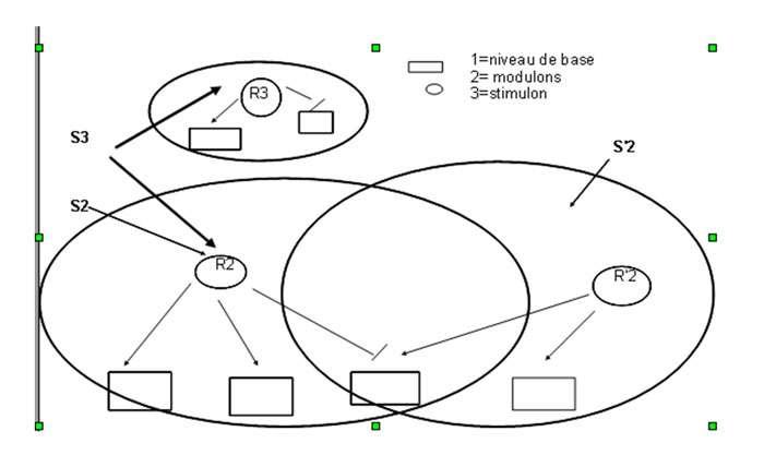 Représentation schématisée de trois niveaux d'intégrations de réseaux de régulation. © Les bactéries leur monde et nous, DR