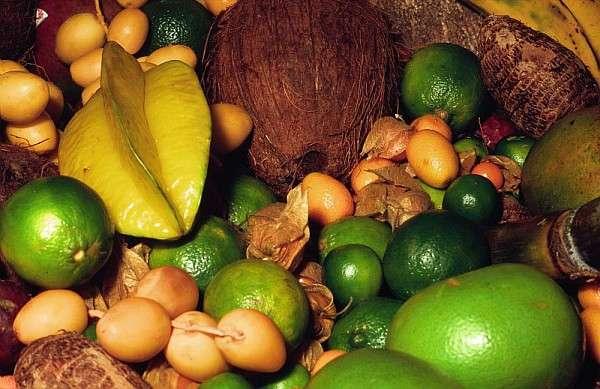 Les fruits exotiques : dattes, citrons et noix de coco