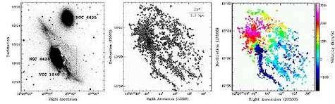Figure 3 : La galaxie NGC 4438 : Prototype d'une galaxie très perturbée par les effets d'environnement. À noter : 1- les traînées d'étoiles qui s'étendent au Nord et au Sud-Ouest du plan galactique (image de gauche, obtenue en bande B) et qui résultent d'une interaction de marée avec son compagnon NGC 4435 et 2- les longs filaments de gaz ionisé en dehors du plan galactique (image centrale) et qui sont dûs à la pression dynamique du milieu intra-amas. L'image de droite est le champ de vitesse correspondant à la carte d'émission du gaz.