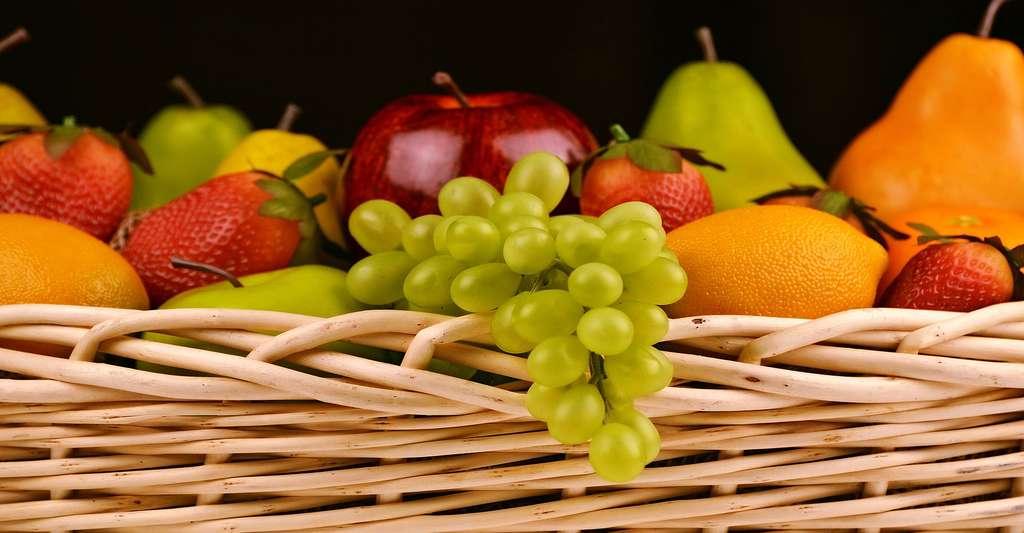 Corbeille de fruits frais. © Diapicard - Domaine public