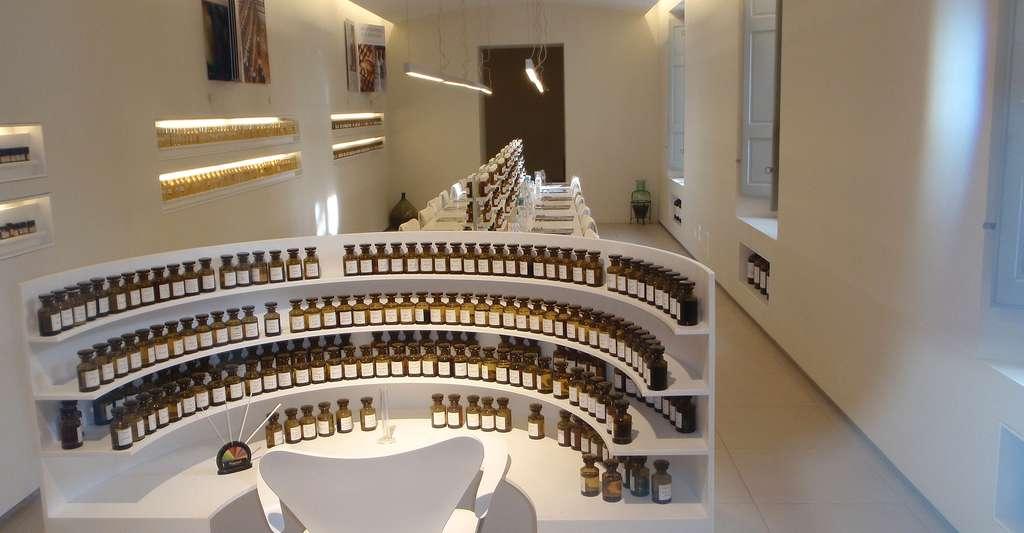 Laboratoire du nez où sont élaborés les parfums. © Jean Guyane Suivre, CC by-sa 2.5