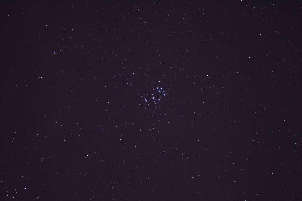 L'amas des Pléiades, M 45, se distingue facilement sans instrument dans la constellation du Taureau. © J.-B. Feldmann