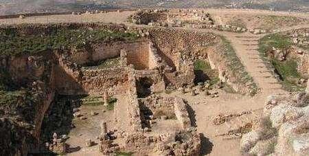 Assassin pervers ou grand bâtisseur, le roi Hérode a marqué l'Histoire. La découverte de son tombeau, deux millénaires après sa mort, est non seulement un évènement archéologique majeur, mais aussi l'aboutissement de plus de cinquante années de recherches acharnées sur le terrain. 28 juin : La momie oubliée de la reine Hatchepsout identifiée La momie de la célèbre pharaonne Hatchepsout a enfin été identifiée un siècle après sa découverte, mettant fin à une énigme vieille d'un siècle. 2 août : En cas de panique, suivez la fourmi !