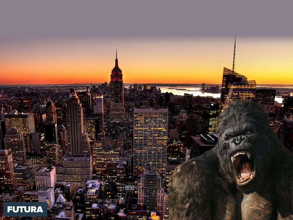 King Kong tower vue sur Manhattan