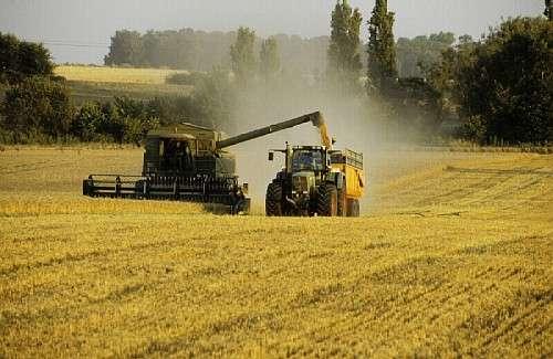 Aujourd'hui, la production française comprend plusieurs sortes d'agricultures : OGM, non OGM, traditionnelle, biologique... © DR