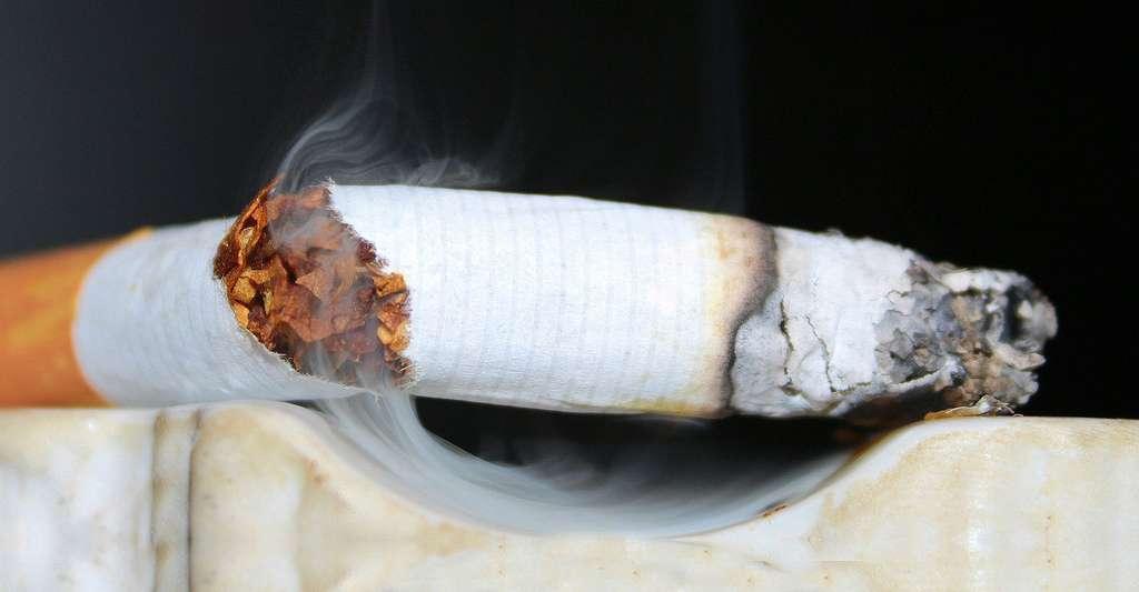 Arrêter de fumer. © Myriams-Fotos, domaine public