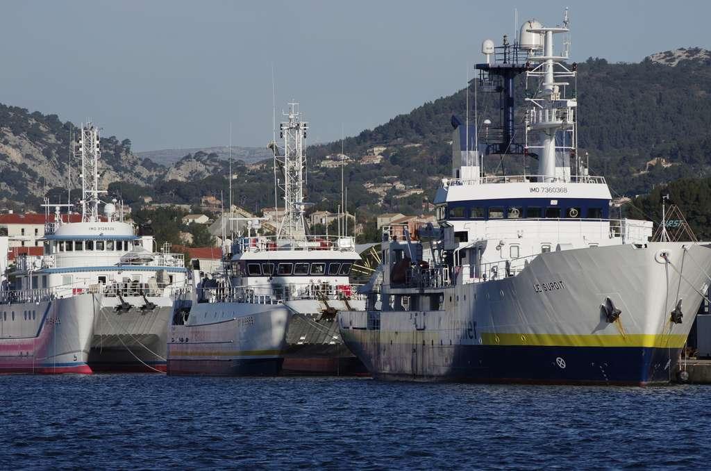 Même si cela reste marginal, l'océanologue fait des sorties en mer afin de prélever des échantillons ou faire des observations sur site. © KIM, Fotolia