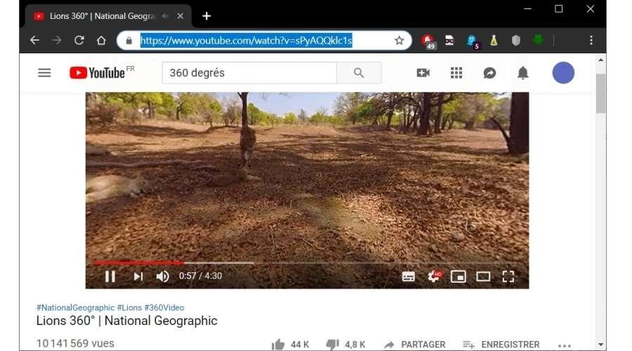 Copie de l'adresse d'une vidéo à 360° © SRWare Iron
