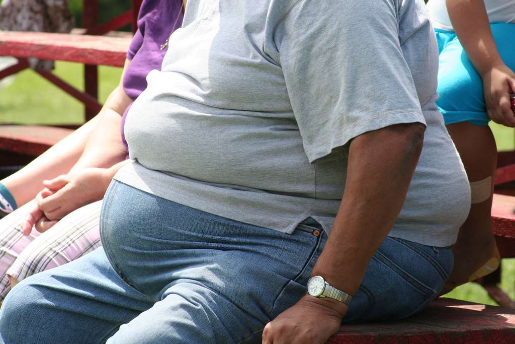 L'obésité, mal chronique dans de nombreux pays, prédispose au diabète. © Tobyotter, Flickr, cc by 2.0