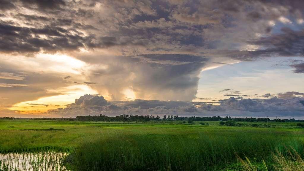 Les liens étroits entre agriculture et climat. © Waqutiar, Pixabay, DP