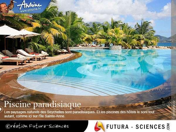 Paysage des Seychelles