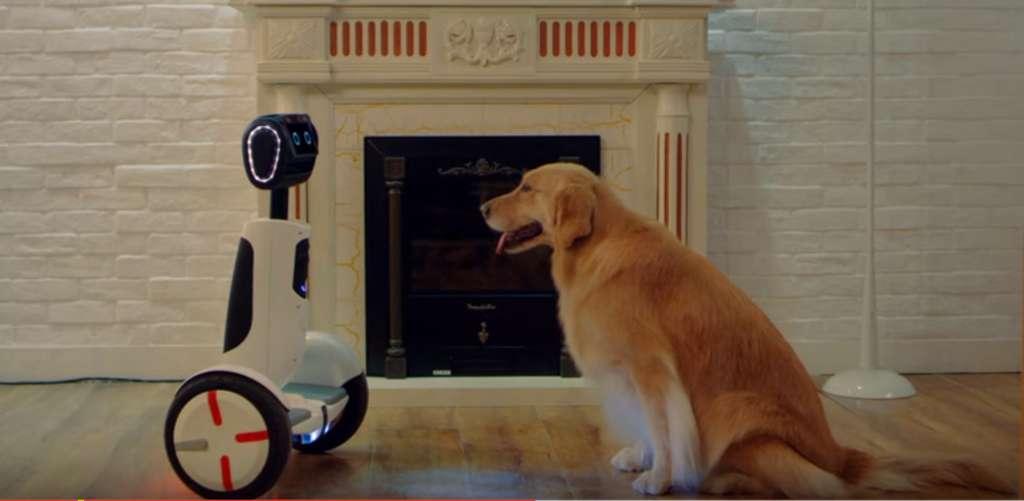 Segway tente de se diversifier en se lançant dans la robotique avec ce concept hybride, mi-gyropode, mi-robot domestique. L'idée est originale et l'engin plutôt séduisant mais quelle est vraiment son utilité ? © Segway Inc.