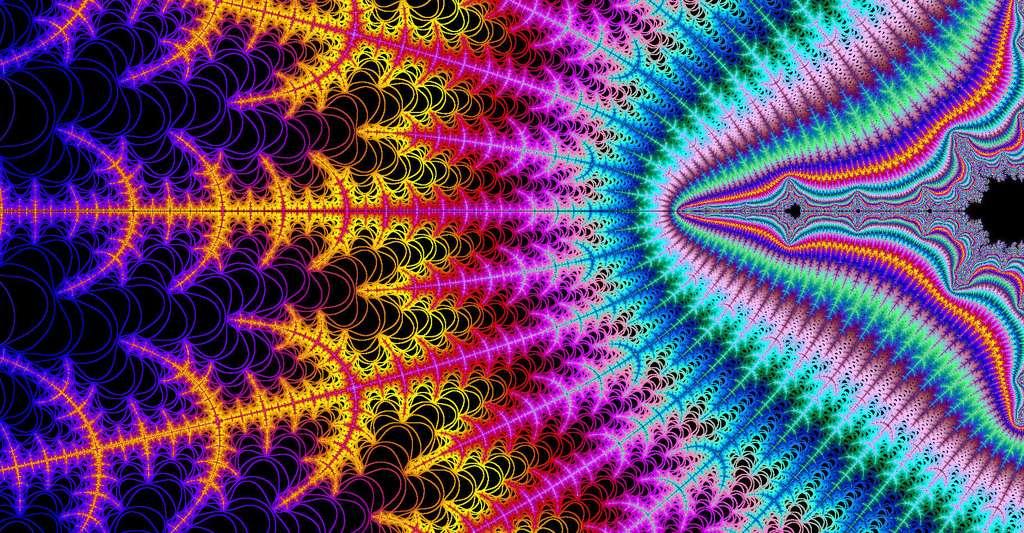 Les fractales ont des propriétés paradoxales. © PROPictoscribe, CC by-nc 2.0