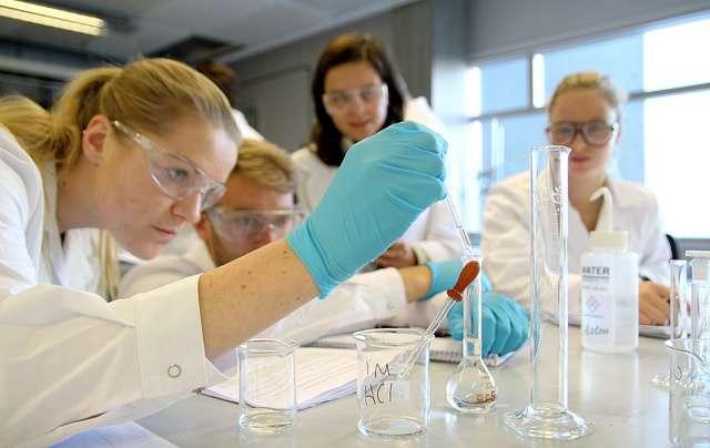 Chimie, ingénierie, électronique : quel que soit le secteur d'activité, rédiger son CV est une étape importante lors d'une recherche d'emploi. © NTNU, Flickr, CC by 2.0