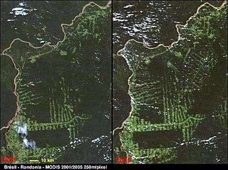 Progression de la déforestation au Brésil, vue par la caméra Modis à bord du satellite Aqua de la Nasa, entre 2002 et 2008. Crédit Nasa