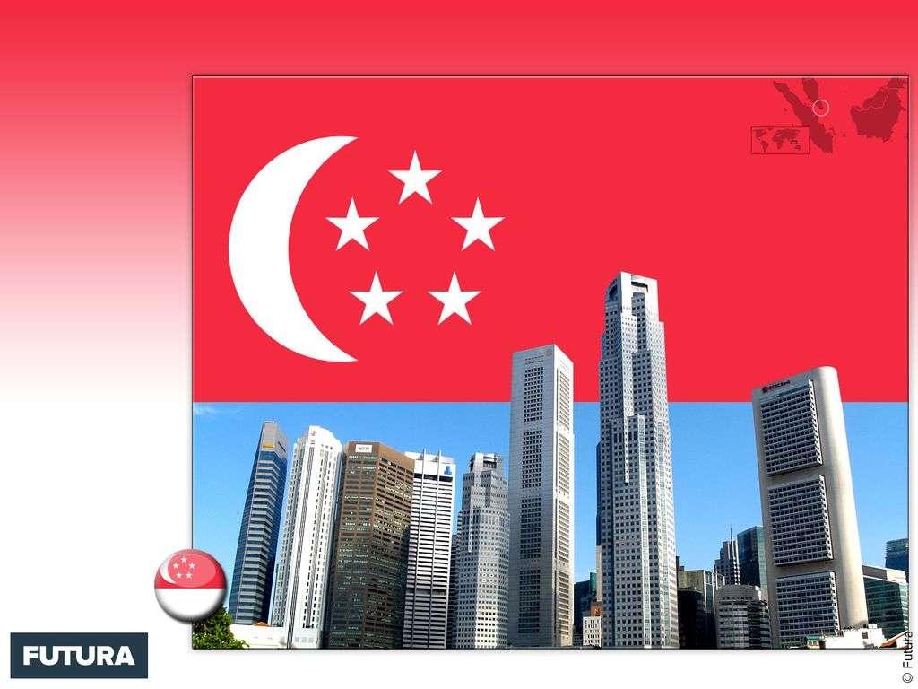 Drapeau : Singapour