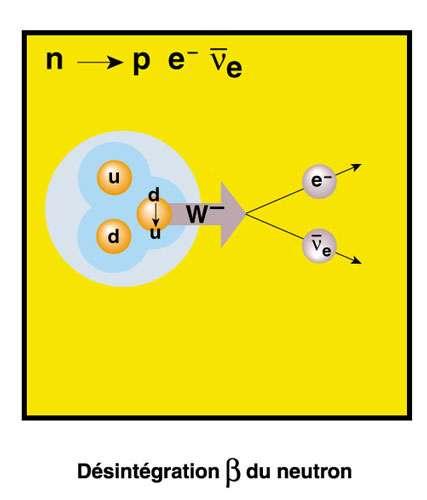 Fig. 1 - La désintégration bêta du neutron du point de vue de l'interaction faible telle qu'elle est décrite aujourd'hui, c'est à dire transformation d'un quark en un autre avec échange d'un boson vecteur intermédiaire.