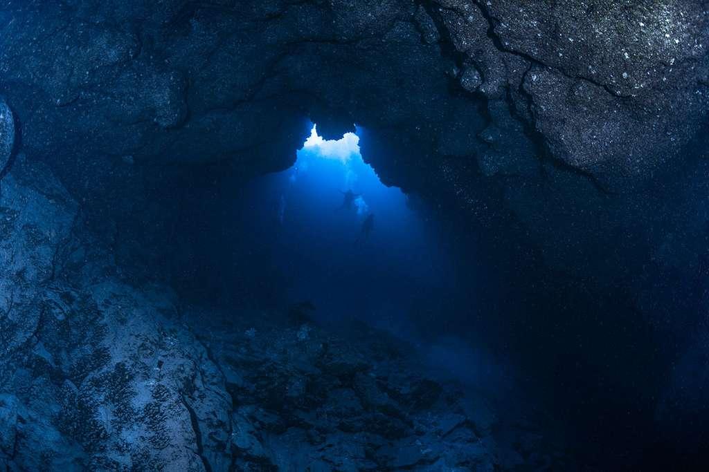 Blue Hole de Misool (photo prise au fond du gouffre à 64 mètres de profondeur). © Gabriel Barathieu, tous droits réservés