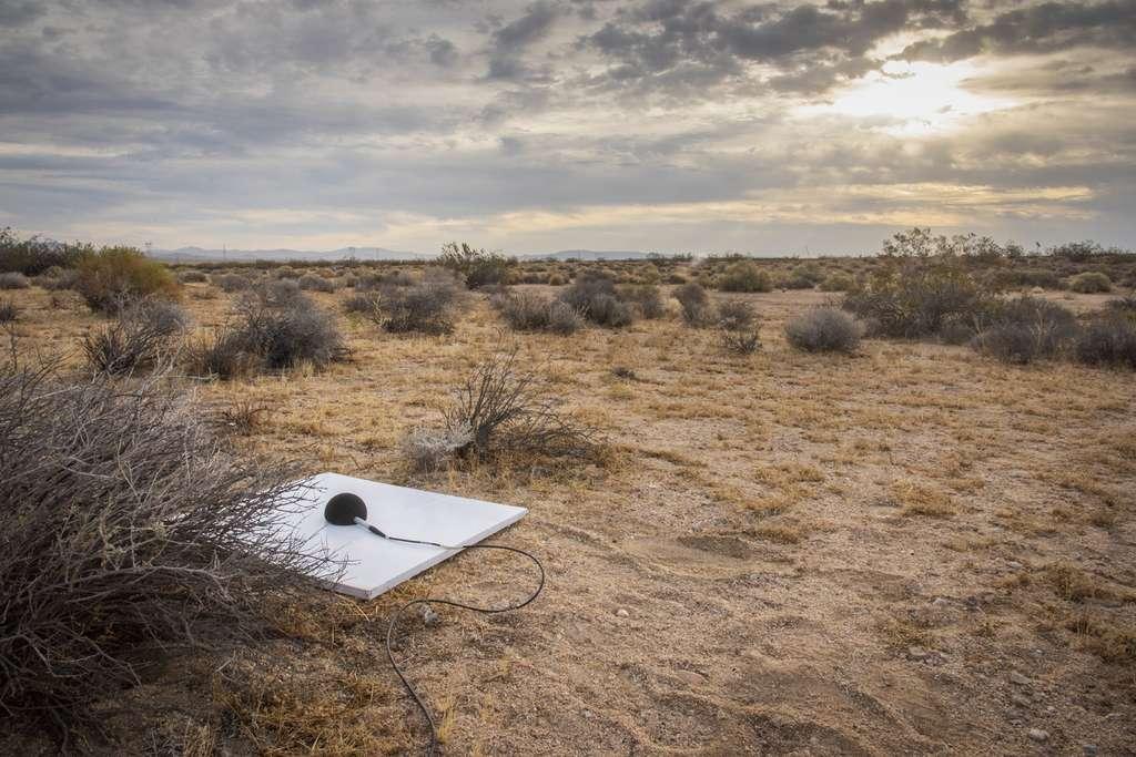 Un des micros déployés dans le désert du Mojave pour vérifier si l'avion supersonique X-59 est bien aussi silencieux qu'il le prétend. © Nasa Photo / Lauren Hughes