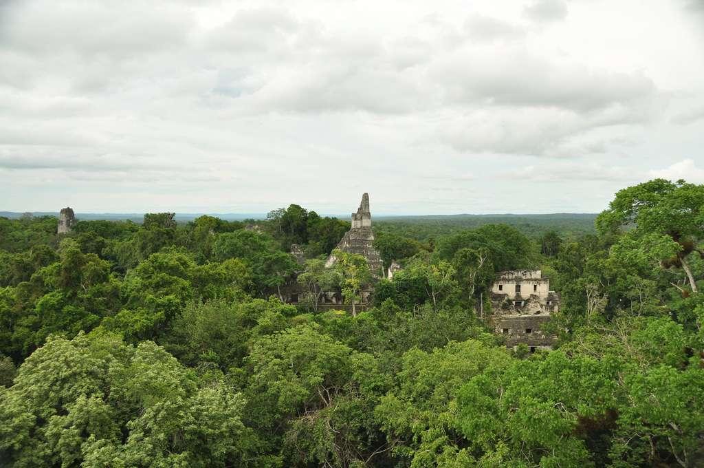 Les Mayas ont déserté leur cité entre 750 et 1050 après J.-C. © Mario Bollini, Flickr