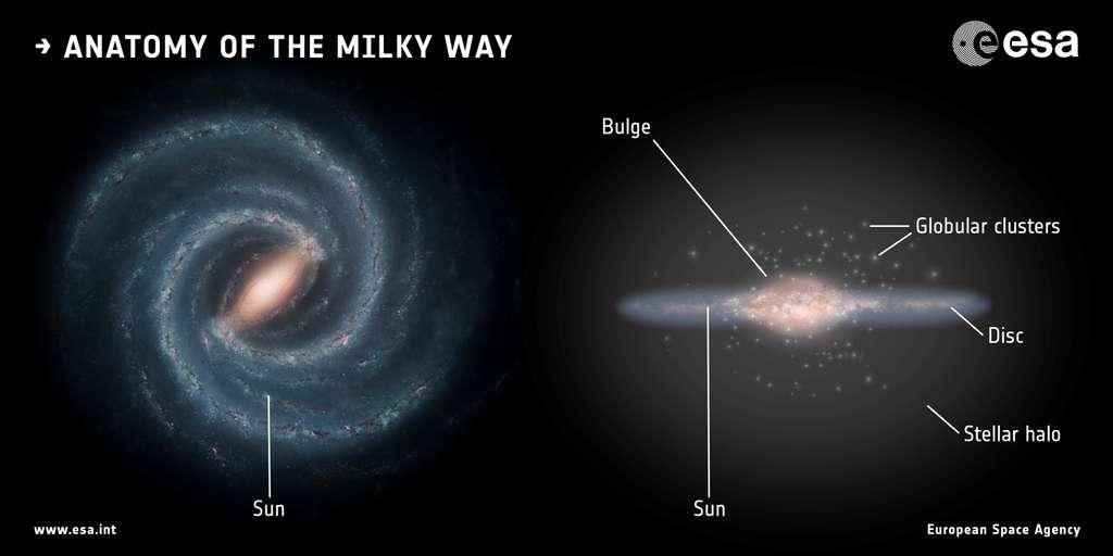 Deux schémas montrant la structure de la Voie lactée, une spirale barrée de 100.000 années-lumière de diamètre avec des amas globulaires (globular clusters), le Soleil (sun) et des vieilles étoiles dans son halo et son bulbe (bulge). © Esa