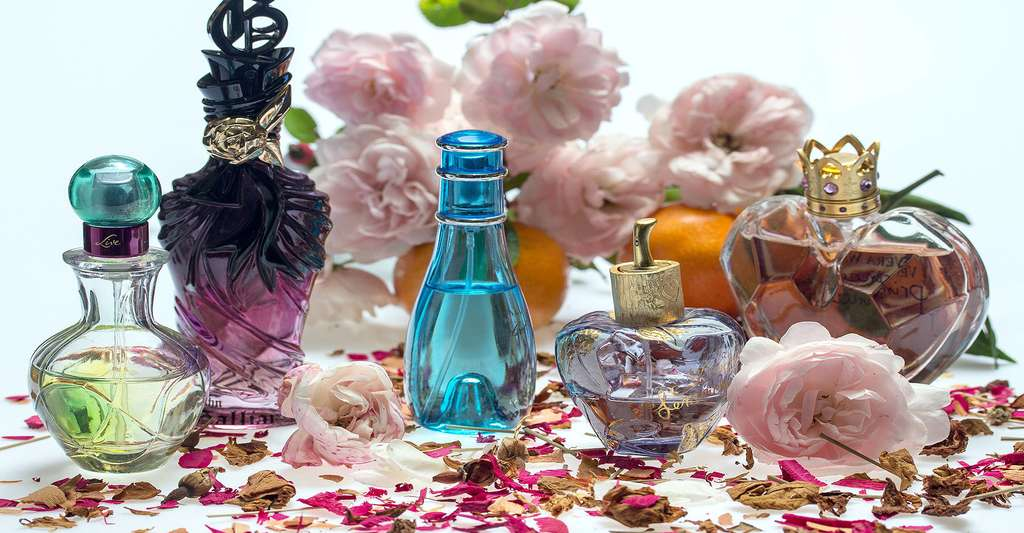 Grasse est considérée comme la capitale du parfum. Ici, des parfums de roses. © Domeckopol, DP