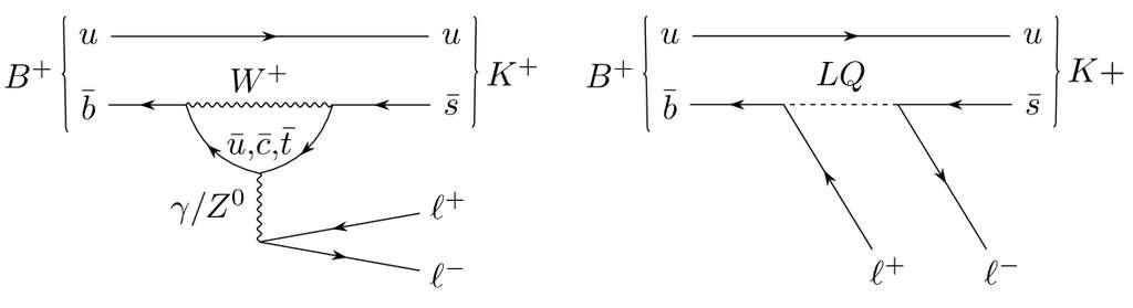 Des diagrammes de Feynman associés à des calculs en théorie quantique des champs décrivant comme un méson B+ composé d'un quark u et d'un antiquark beau peut se désintégrer en différents canaux leptoniques (lepton + son antilepton) accompagnant la production d'un méson K+. Le premier montre ce qui est attendu du modèle standard en physique des particules, le second montre la réaction avec un leptoquark. © Cern LHCb collaboration