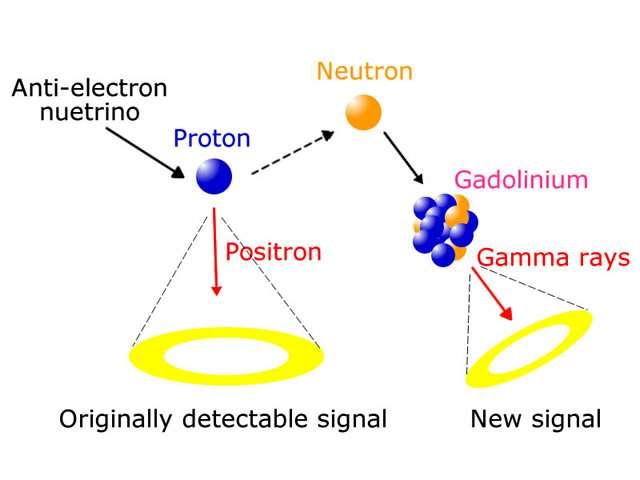 Les neutrinos des rayons cosmiques sont parfois détectés indirectement par l'émission de lumière Cerenkov qu'ils engendrent dans de l'eau. Comme le montre ce schéma, un second signal peut être obtenu avec des noyaux de gadolinium (voir les détails dans le texte ci-dessous). © Kamioka Observatory
