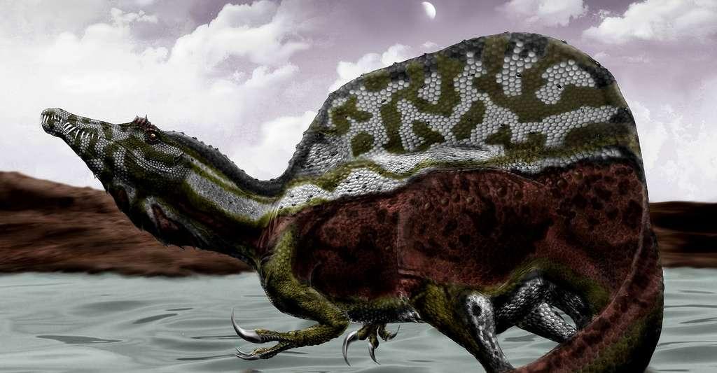 Spinosaurus. © Durbed, CC BY-SA 3.0