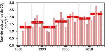 Taux de croissance annuel du CO2 atmosphérique à l'île d'Amsterdam. Les barres rouges indiquent les taux de croissance moyennés sur des périodes de 5 ans. © M. Ramonet