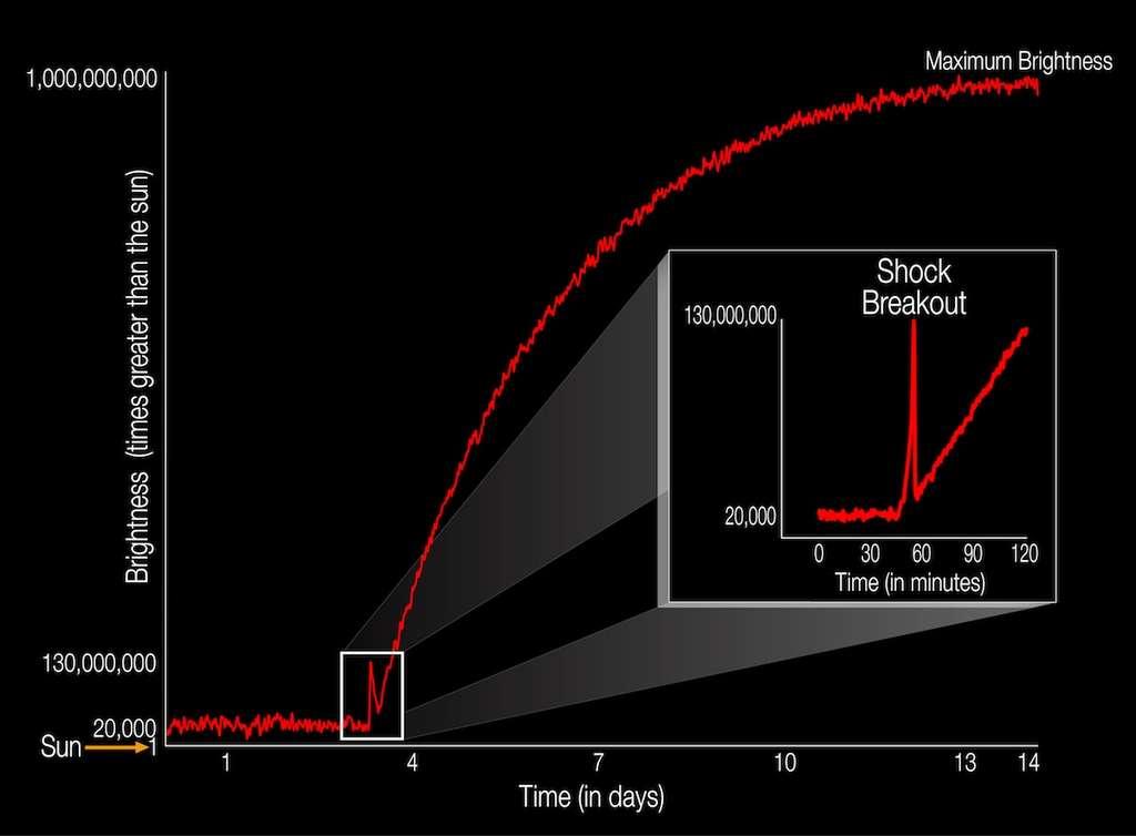 Courbe de luminosité (brightness, en anglais sur l'image) de KSN 2011d, avant et pendant son explosion en supernova de type II. Grâce à Kepler, ses derniers instants ont pu être étudiés. L'observation est conforme aux prédictions des modèles mathématiques. En fin de vie, la supergéante rouge (500 fois la taille du Soleil) était environ 20.000 fois plus brillante que le Soleil jusqu'au sursaut d'une vingtaine de minutes (flash lumineux ou shock breakout, en anglais), qui décupla sa luminosité et la fit culminer à 130 millions de fois celle de notre étoile. Quelques jours plus tard, l'astre était un milliard de fois plus brillant que le Soleil! © Nasa, Ames, W. Stenzel