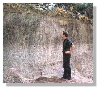 Dépôts pliniens de l'éruption de 79 près de Stabiae. On note l'évolution de la couleur qui correspond au changement de composition des laves. La statification horizontale indique une mise en place sous forme de pluie de ponces. Cliché Sigurdsson et al, 1985