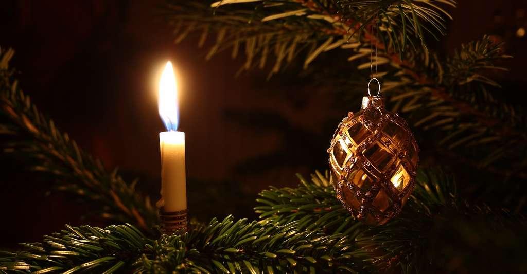 Votre sapin de Noël, quand il n'est pas en plastique, est généralement un épicéa! © SteenJepsen, Pixabay, CC0 Public Domain