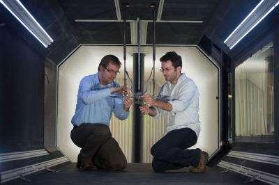 Gareth Dyke (à droite) et Roeland de Kat interviennent sur Maurice, la maquette d'un Microraptor, à l'intérieur même d'une soufflerie. Les trois pistons utilisés pour faire bouger la maquette durant les tests sont visibles entre leurs têtes. © Université de Southampton