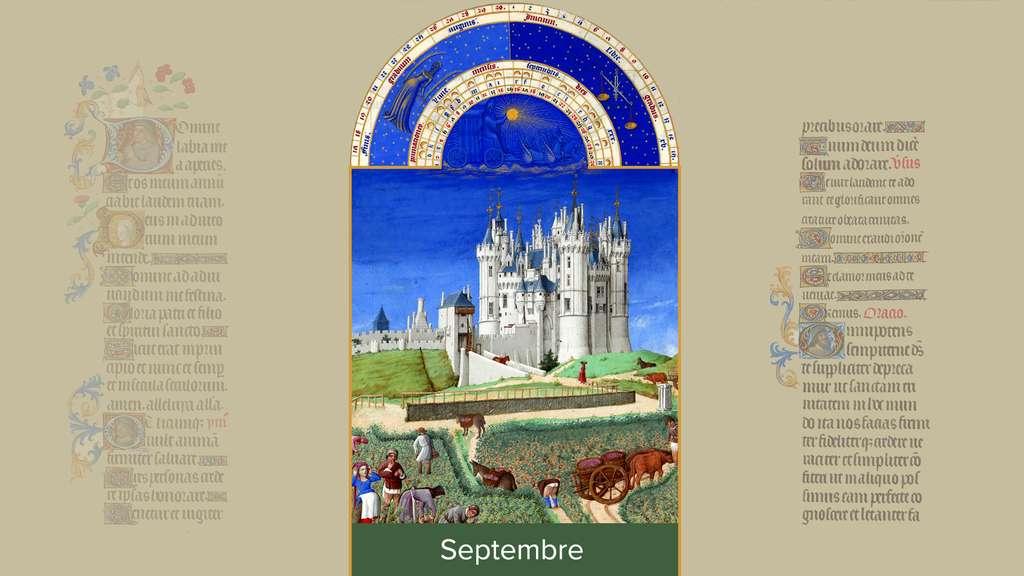 Septembre : vendanges au château de Saumur