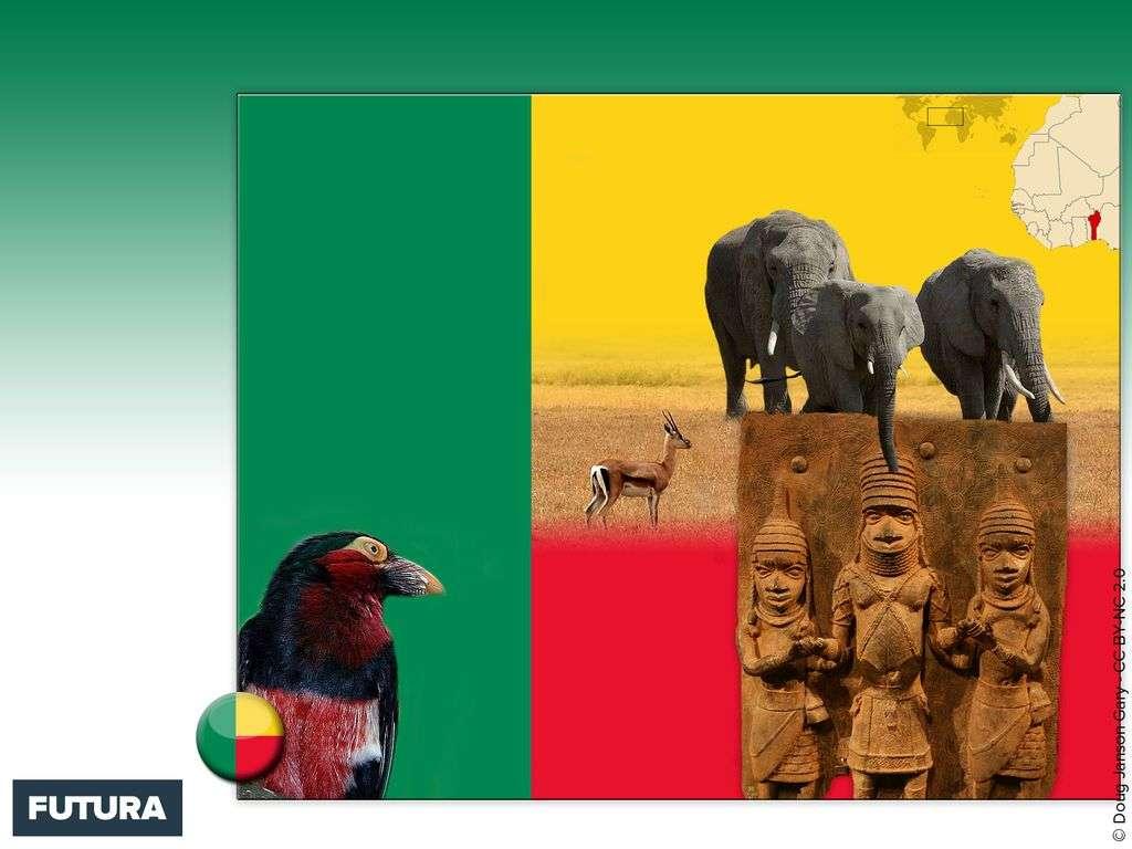 Drapeau : Bénin