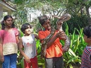 Des enfants montrant un jeune python réticulé, de dimensions déjà respectables. © Pandiyan CC by-nc 2.0
